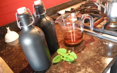 Sweet Saturday: Lemon Balm Syrup